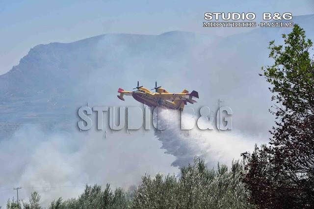 Πυρκαγιά στο Μαίναλο - Μεγάλες δυνάμεις για την κατάσβεσή της