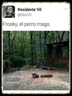 Frosky, el perro mago