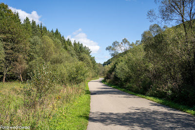 Na drodze z Leluchowa do Dubnego