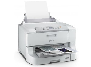Download Epson WF-8010DW driver