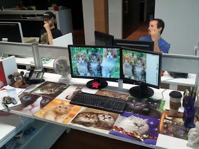 Arbeitsplatz Katzenliebhaberin lustiger Spass