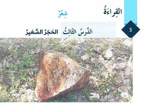 شرح قصيدة الحجر الصغير لغة عربية للصف الثامن الفصل الاول  مناهج الامارات