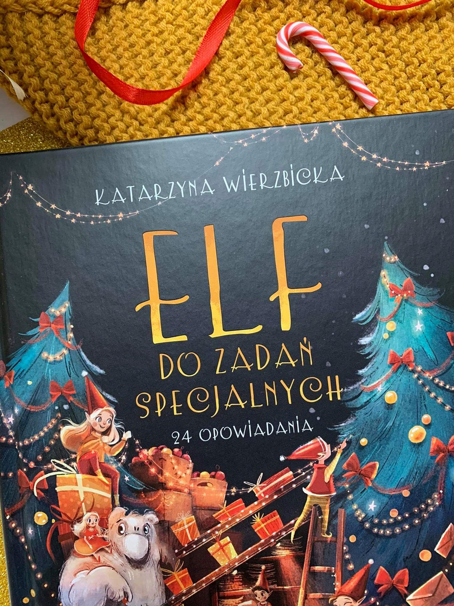 """""""Elf do zadań specjalnych"""" Katarzyna Wierzbicka"""