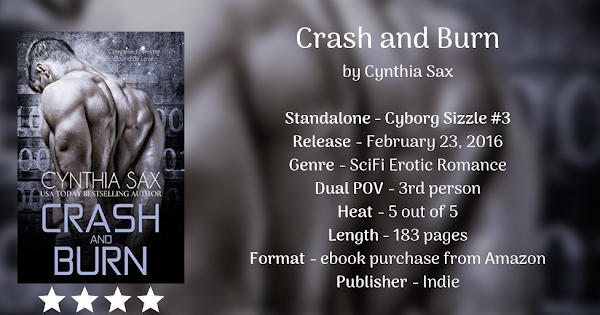 CRASH AND BURN by Cynthia Sax
