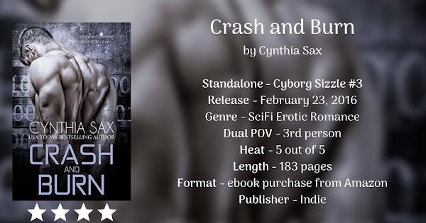 CRASH AND BURN by Cynthia Sax