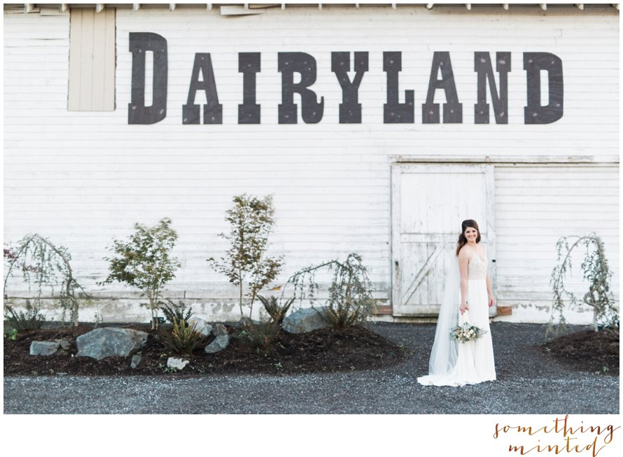 Dairyland Wedding Photographer Something Minted Photography