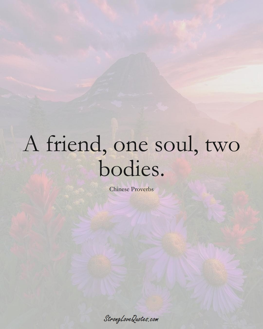 A friend, one soul, two bodies. (Chinese Sayings);  #AsianSayings