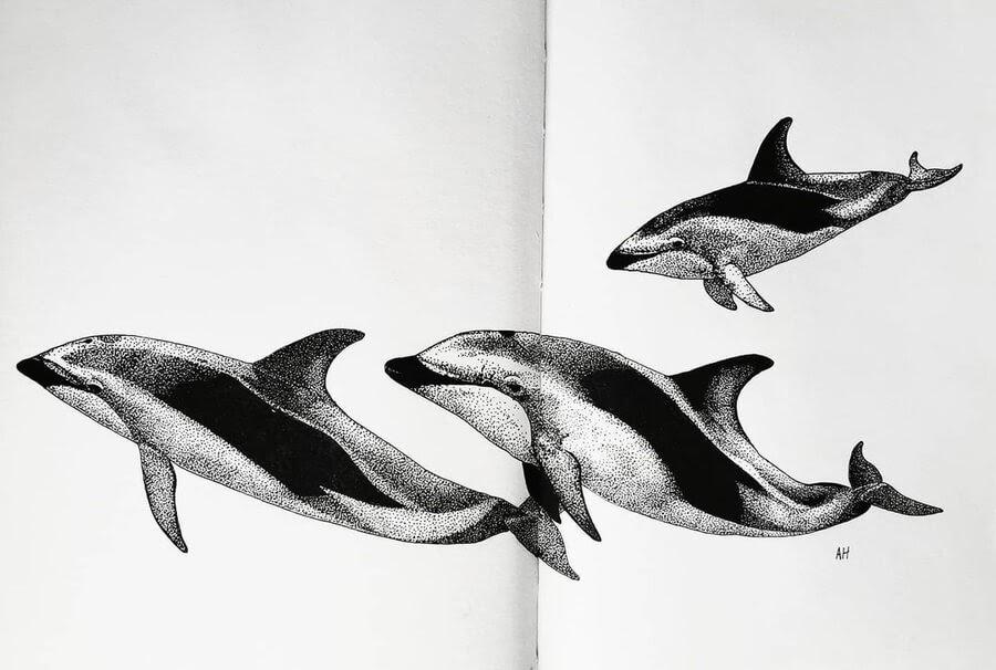 08-Three-dolphins-Ashley-Habernal-www-designstack-co