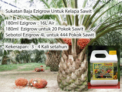 4 Liter Baja Ezigrow untuk 444 Pokok Sawit