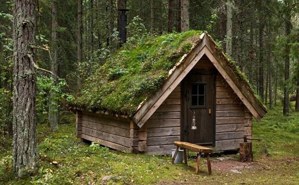 ΦΑΚΕΛΟΣ ΕΠΙΒΙΩΣΗ-Κατασκευή καλύβας καταφύγιου στο δάσος ...