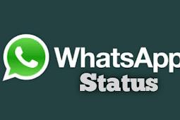 Cara Melihat Status Whatsapp Tanpa Ketahuan dari Pemiliknya yang Aman