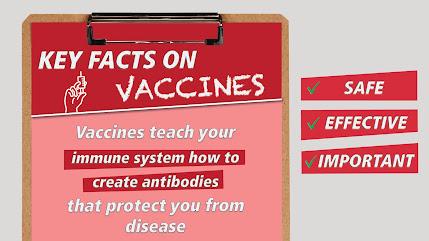 vaccines help you create antibodies against disease