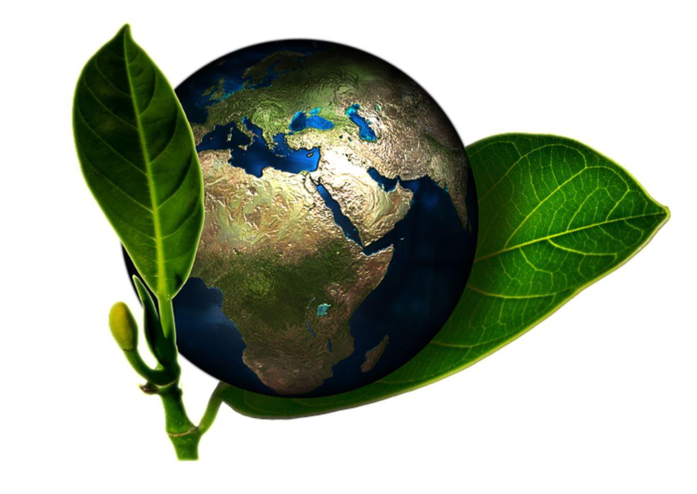 """""""الاستدامة"""" من أهم موضوعات دبي """"إكسبو 2020"""""""