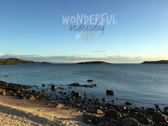 Wonderful Wednesday #143