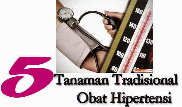 5 Tanaman Tradisional Obat Hipertensi
