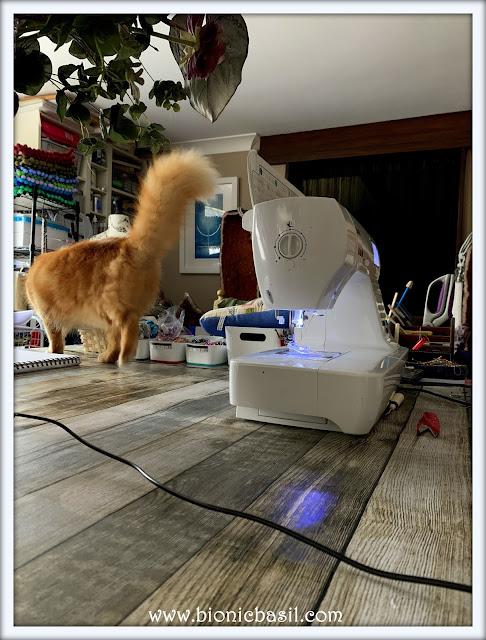 Inspector Fudge ©BionicBasil® The Pet Parade 391