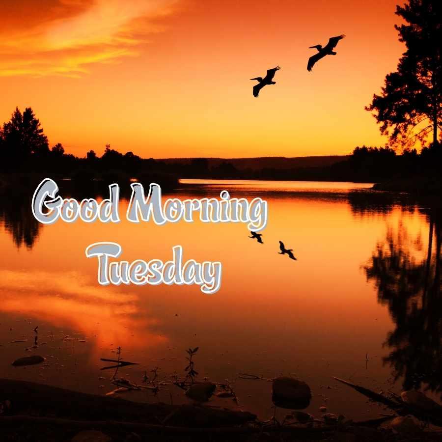 gud morning tuesday