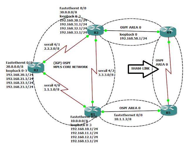 OSPF Sham Links are required when we try to use a backdoor link between two CE routers in MPLS VPN PE CE scenarios.