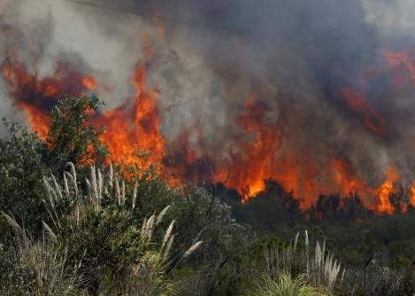 Kliping Bencana Alam Kebakaran Hutan Banjir Gempa Bumi