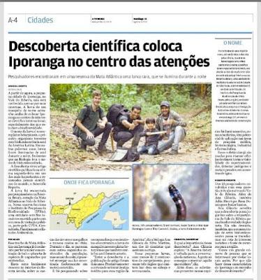 Pesquisadores encontram Larva com bioluminescência em Iporanga no Vale do Ribeira