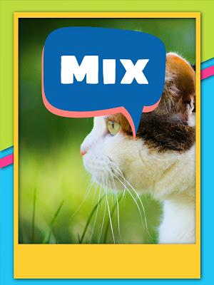 Fréquence de nouvelle chaine Mix qui diffuse les films américains sur Nilesat