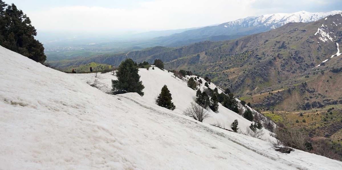 DSC02481 Panorama