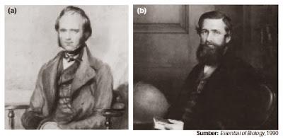 Charles Darwin dan Rulles Wallace