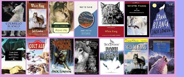 Portadas de la novela juvenil naturalista Colmillo blanco, de Jack London