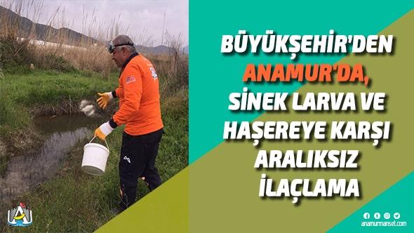 Mersin Büyükşehir Belediyesi,Vahap Seçer,Mersin Büyükşehir Belediyesi Anamur Şube Müdürlüğü,Anamur Haber,