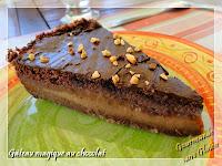 http://gourmandesansgluten.blogspot.fr/2014/10/gateau-magique-au-chocolat-sans-gluten.html