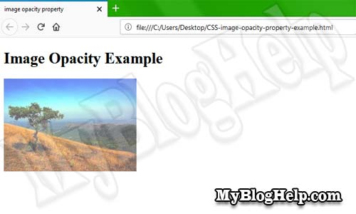 CSS image opacity property
