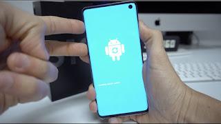 Samsung Galaxy S10+ [PLUS] SM-N975F Lupa Pola