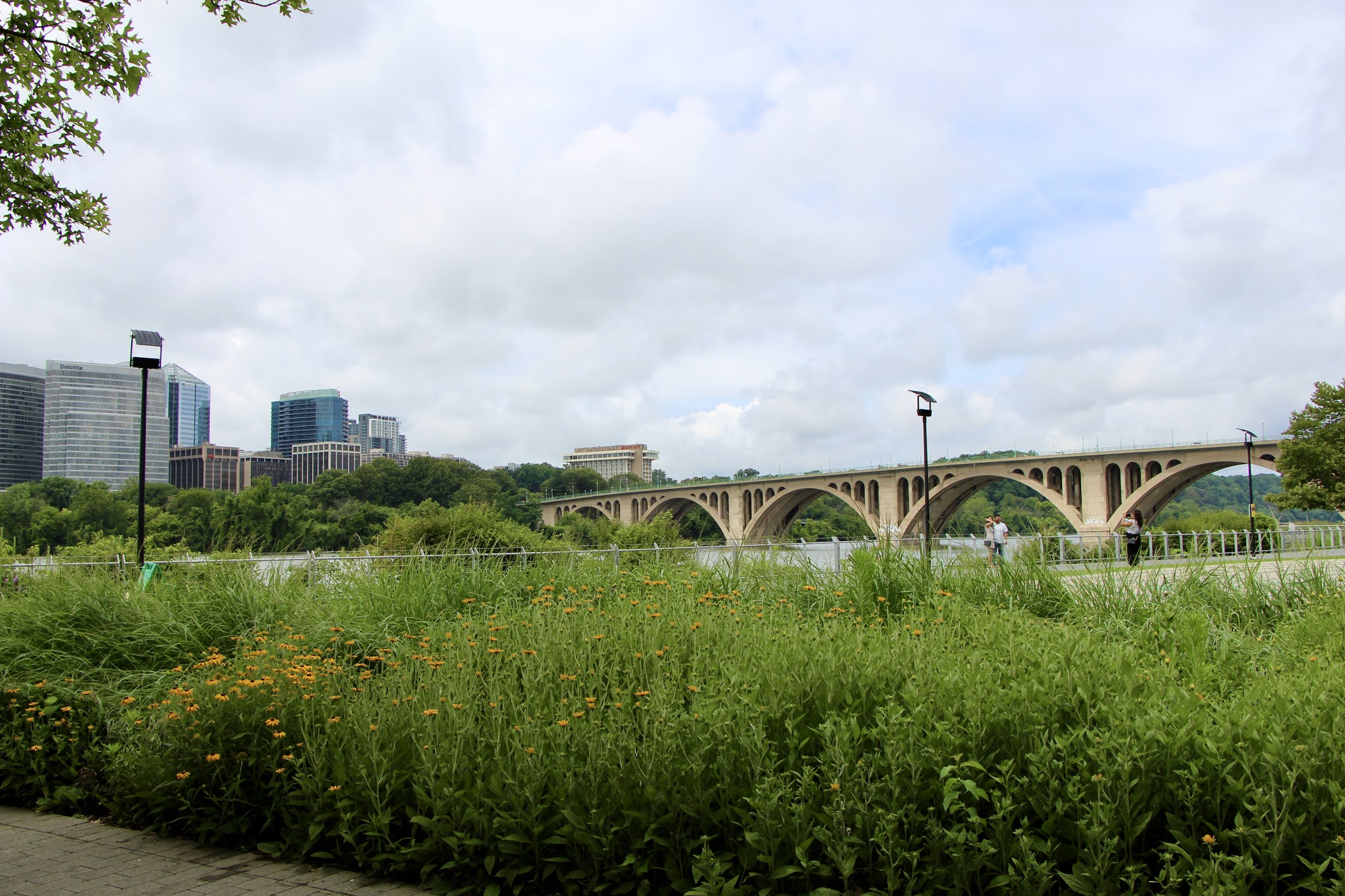 water,  Potomac river, dc travel guide