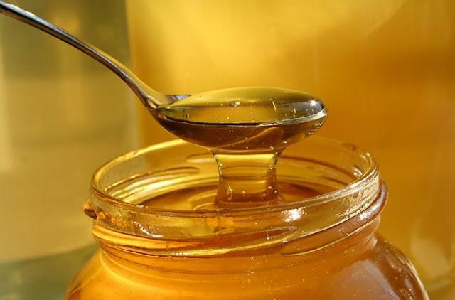 cara simpan madu kelulut