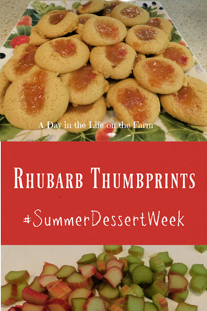 Rhubarb Thumbprints pin