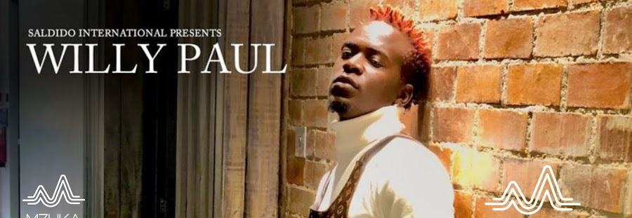 Download Willy paul - Tik tok