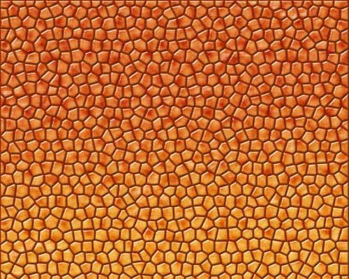 Dragon, Snake and Reptile Scales and Skin