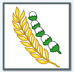 Arti Simbol Pancasila, Sila Ke 5 Padi dan Kapas