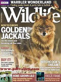 BBC Wildlife Magazine February 2017