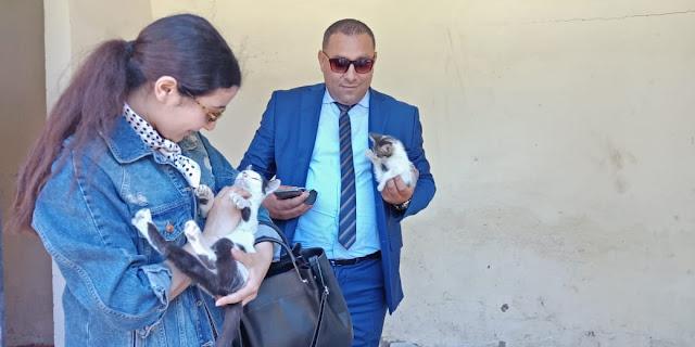 Incident de Safi- Il est avocat et il milite pour les droits des animaux- Notre invité Maître Youssef Rharib