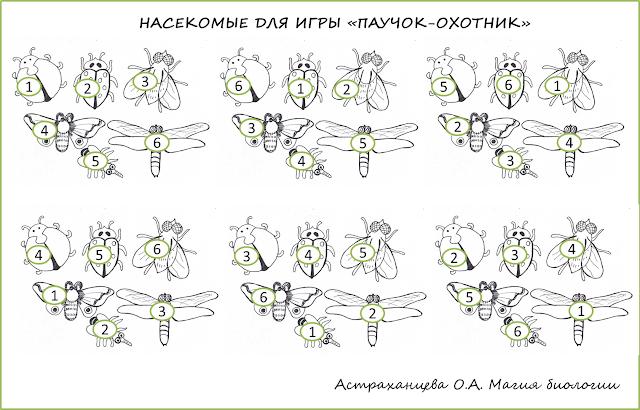 palchikovye-igrushki-podelka-magnitnaja-pauk-ohotnik