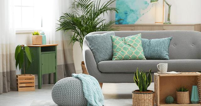 Uso de plantas na decoração da sala de estar