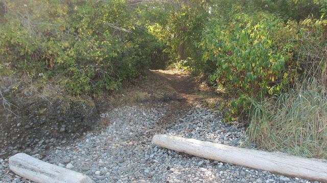 Clark Island campground