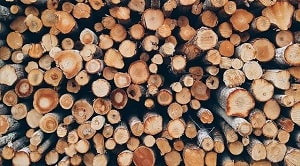 Makalah pengeringan dan pengawetan kayu akan menjelaskan pengertian, jenis jenis pengeringan, dan faktor kerusakan kayu pada saat pengeringan.
