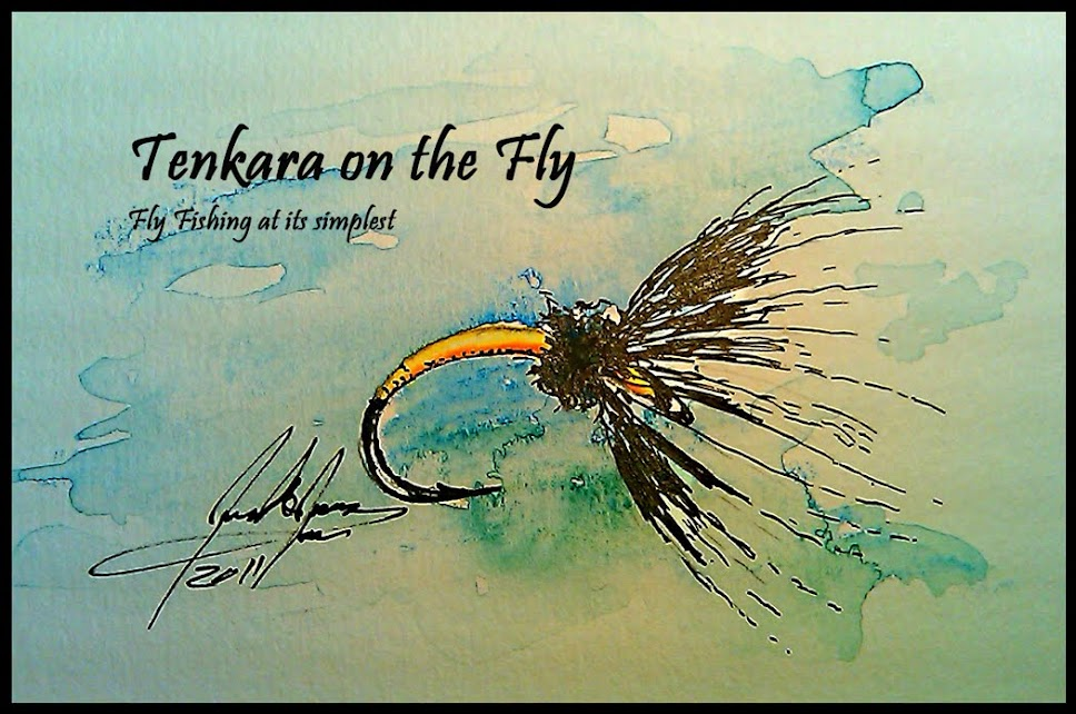 Tenkara on the Fly