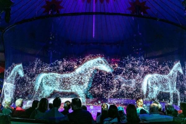 Sirkus di Jerman Ini Pakai Hologram 3D Gak Ada Lagi Penyiksaan Hewan