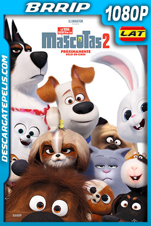 La vida secreta de tus mascotas 2 (2019) HD 1080p BRRip Latino – Ingles