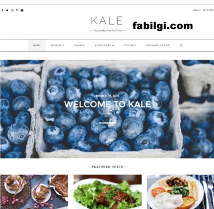 Wordpress Yemek Tarifi, Moda Sitesi Teması İndir 2020 Ücretsiz