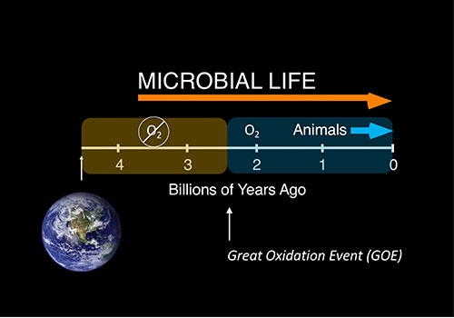 But the early life history on Earth did not include oxygen in the first two billion years (Source: Dianne Newman, Caltech)