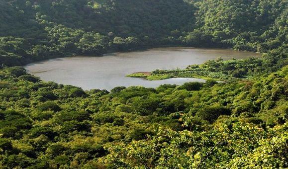 Nicaragua impulsa plan para reducir emisiones por deforestación